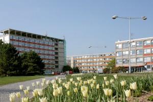 Высшее образование в Праге - основы выбора университета