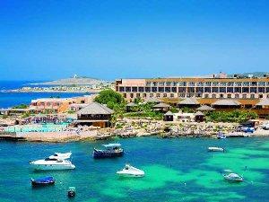 Планирование учебы и отдыха на Мальте