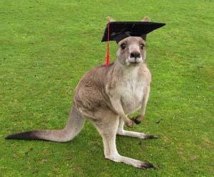 Получение высшего образования в Австралии