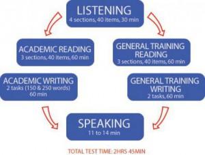 Структура экзамена IELTS: особенности и сложности